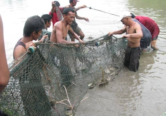 Members of the rival rebel groups Moro Islamic Liberation front and Moro National Liberation front manage a European Union-assisted communal fishing venture in Kabacan, North Cotabato. (Photo from PhilStar/John Unson)